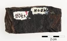 Monograptus priodon ?