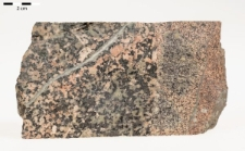 żyła aplitowa na kontakcie z granodiorytem amfibolowym