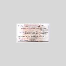 Monilinia oxycocci