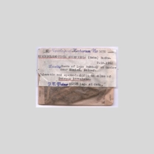 Myriosclerotinia scirpicola