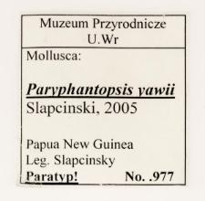 Paryphantopsis yawii Slapcinsky, 2005