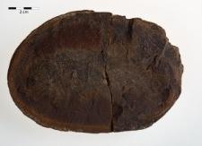 Rhabdolepis macropterus